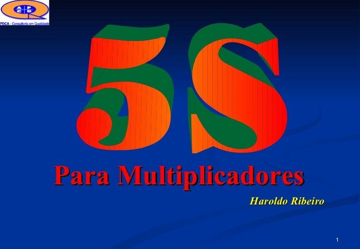 Para Multiplicadores               Haroldo Ribeiro                                 1