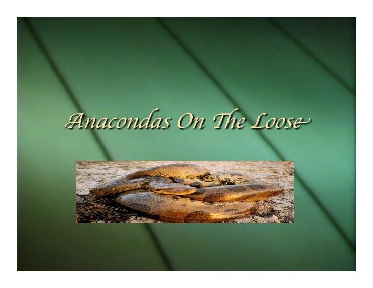 Anacondas On e Loose