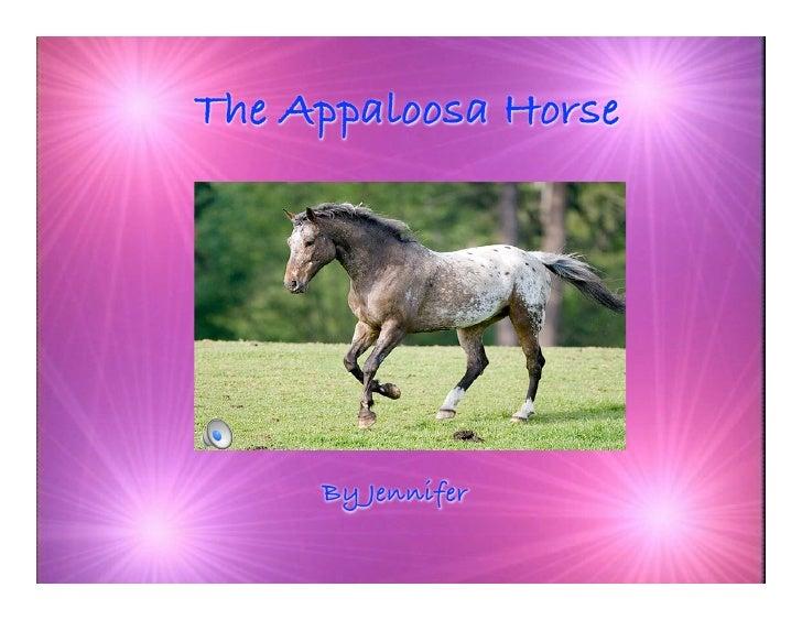 The Appaloosa Horse          By Jennifer