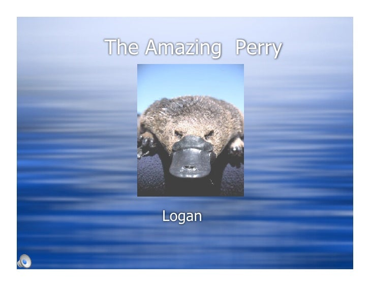 The Amazing Perry          Logan