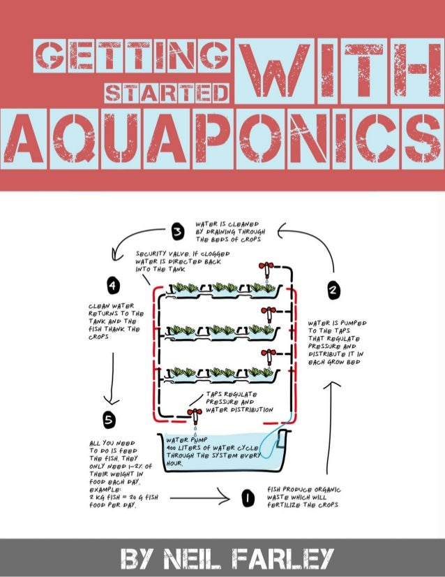 The 5 Secrets to Being Successful With Aquaponics If you want to be successful with aquaponics there are 5 secrets you nee...