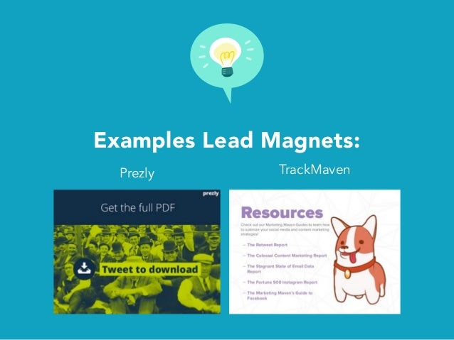 Examples Lead Magnets: Prezly TrackMaven