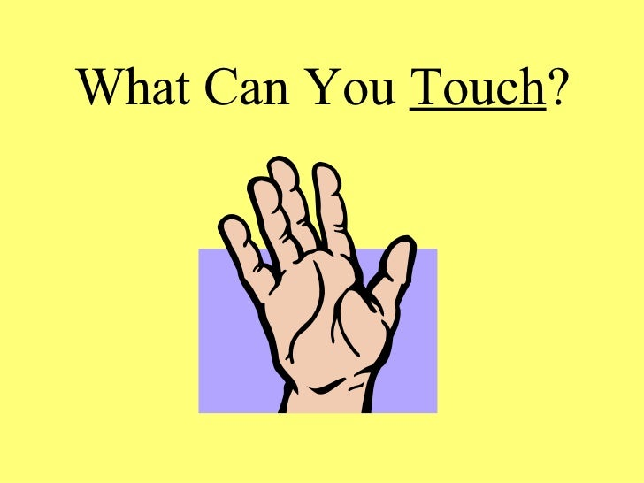 What Can You  Touch ?