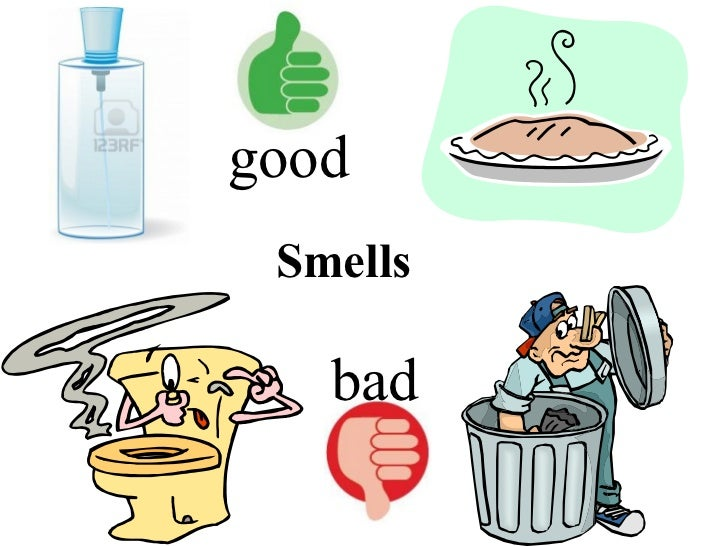 Smells bad good