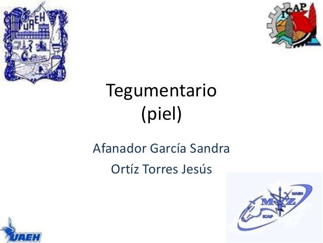 Tegumentario  (piel)  Afanador García Sandra  Ortíz Torres Jesús