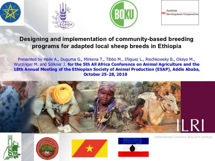 Designing and implementation of community-based breeding programs for adapted local sheep breeds in Ethiopia Presented by ...