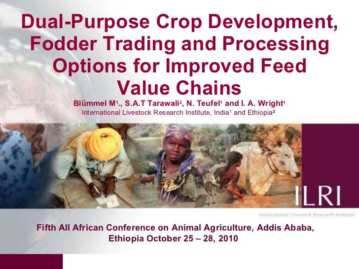 Dual-purpose crop development, fodder trading and processing pptions for improved feed value chains