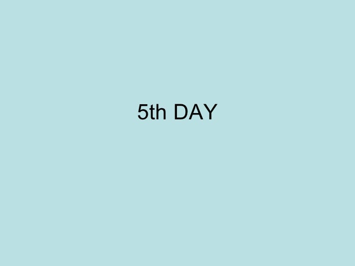 5th DAY