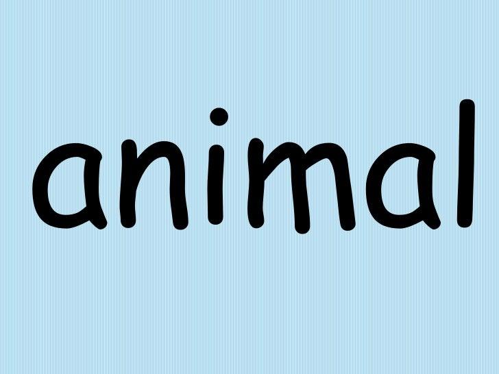 animal<br />