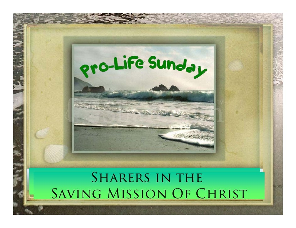 Sharers in the 5th Sunday In Ordinary Time   Saving Mission Of Christ