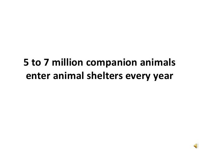 5 to 7 million companion animals enter animal shelters every year