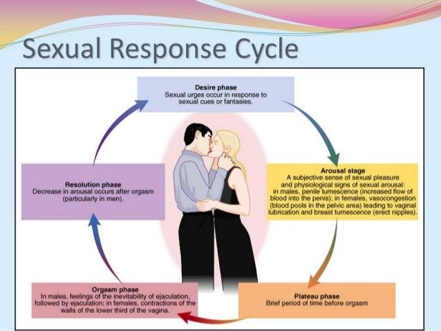 Sex a lifelong pleasure - the female orgasm