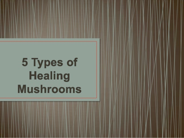 Shiitake mushrooms are considered a delicacy and   medicinal mushroom in the East. The most well-knownbenefit of these smo...