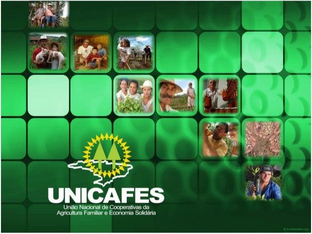 CRIAÇÃO DA UNICAFES  UNICAFES NACIONAL – 22 de junho de 2005  UNICAFES do Rio Grande do Sul - 27 de julho de 2006 Quadro...