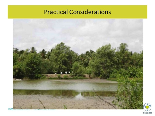 Emerging Opportunities For Coastal Wetland Carbon Projects
