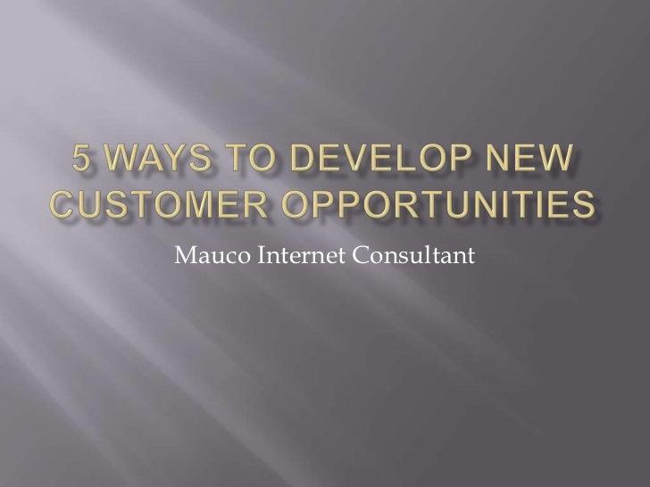 Mauco Internet Consultant