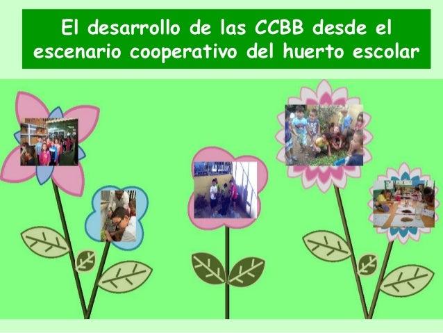 El desarrollo de las CCBB desde el escenario cooperativo del huerto escolar