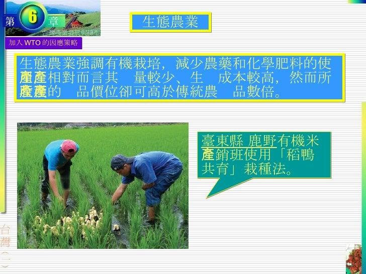 加入 WTO 的因應策略 生態農業強調有機栽培,減少農藥和化學肥料的使用,相對而言其產量較少、生產成本較高,然而所收穫的產品價位卻可高於傳統農產品數倍。 生態農業 臺東縣 鹿野 有機米產銷班使用「稻鴨共育」栽種法。