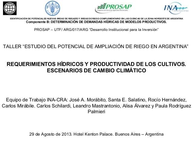 IDENTIFICACIÓN DE POTENCIALES NUEVAS ÁREAS DE REGADÍO Y ÁREAS DE RIEGO COMPLEMENTARIO EN LAS CUENCAS DE LA ZONA NORDESTE D...