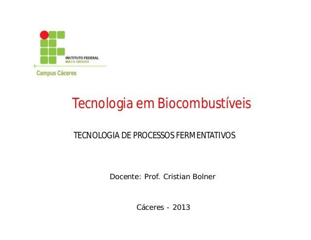 TECNOLOGIA DE PROCESSOS FERMENTATIVOS Docente: Prof. Cristian Bolner Cáceres - 2013 Tecnologia em Biocombustíveis