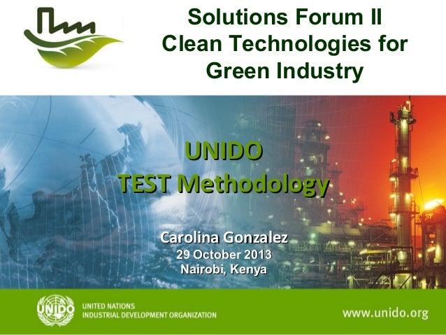 Solutions Forum II Clean Technologies for Green Industry  UNIDO TEST Methodology Carolina Gonzalez 29 October 2013 Nairobi...
