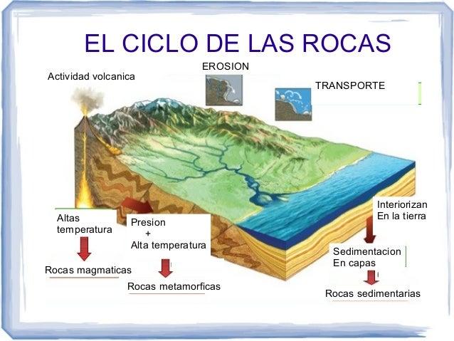 for Roca definicion