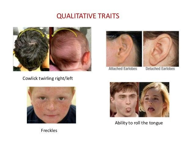 6.human genetics