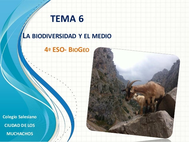 TEMA 6 LA BIODIVERSIDAD Y EL MEDIO 4º ESO- BIOGEO  Colegio Salesiano CIUDAD DE LOS MUCHACHOS