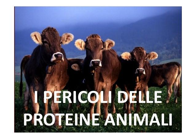 I PERICOLI DELLE PROTEINE ANIMALI