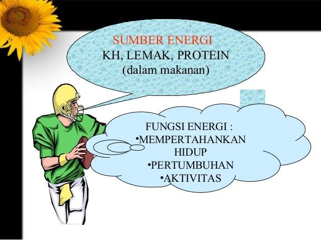 Diet sehat alami, Tanpa obat, Tanpa suntik, Aman tanpa efek