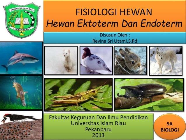 FISIOLOGI HEWAN Hewan Ektoterm Dan Endoterm Fakultas Keguruan Dan Ilmu Pendidikan Universitas Islam Riau Pekanbaru 2013 5A...