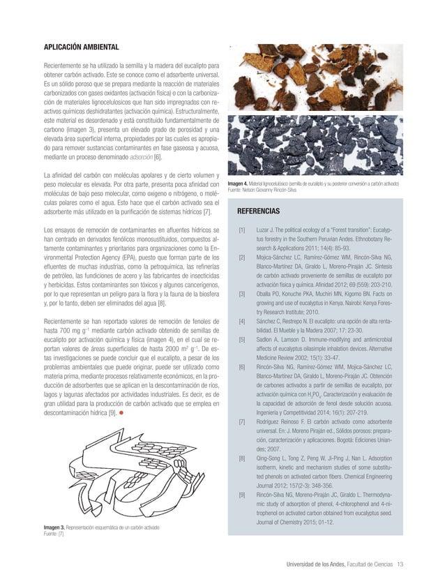 Universidad de los Andes, Facultad de Ciencias 13 APLICACIÓN AMBIENTAL Recientemente se ha utilizado la semilla y la mader...