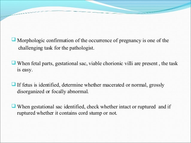 Disorders of pregnancy and placental pathology 4 morphologic confirmation of the occurrence of pregnancy altavistaventures Choice Image