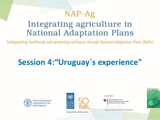"Session 4:""Uruguay´s experience"""
