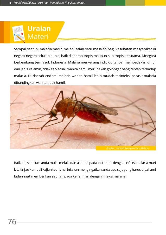 Modul Pendidikan Jarak Jauh Pendidikan Tinggi Kesehatan 76 Sampai saat ini malaria masih mejadi salah satu masalah bagi ke...