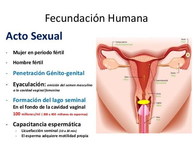 penetracion a la mujer
