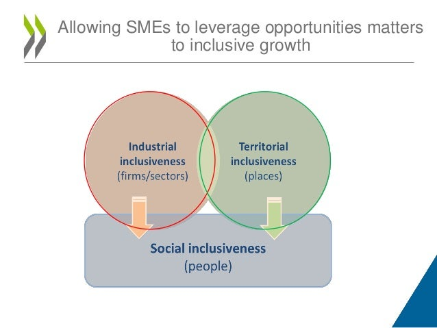 Inclusive innovation Ecosystems in the digital economy Slide 3