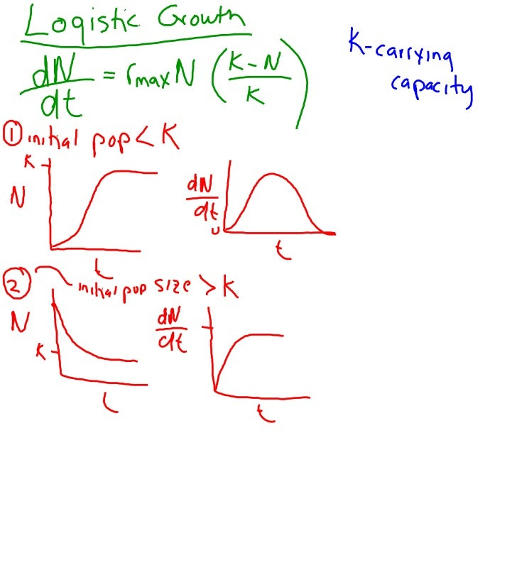 Smart Board Notes 6-22