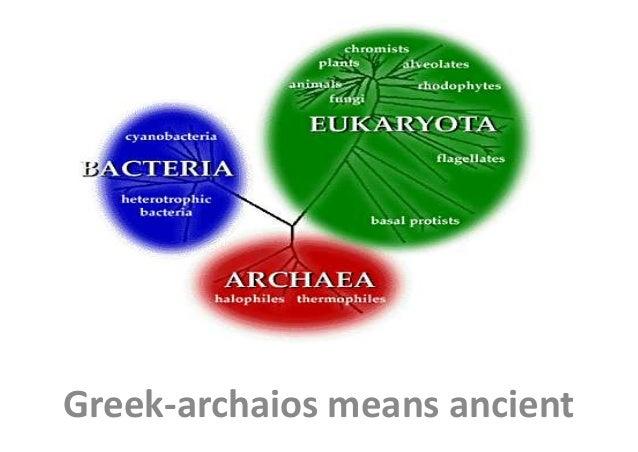 Archaea Greek-archaios means ancient