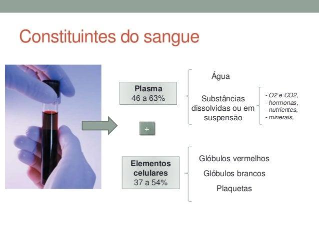 CN9-constituintes do sangue Slide 3