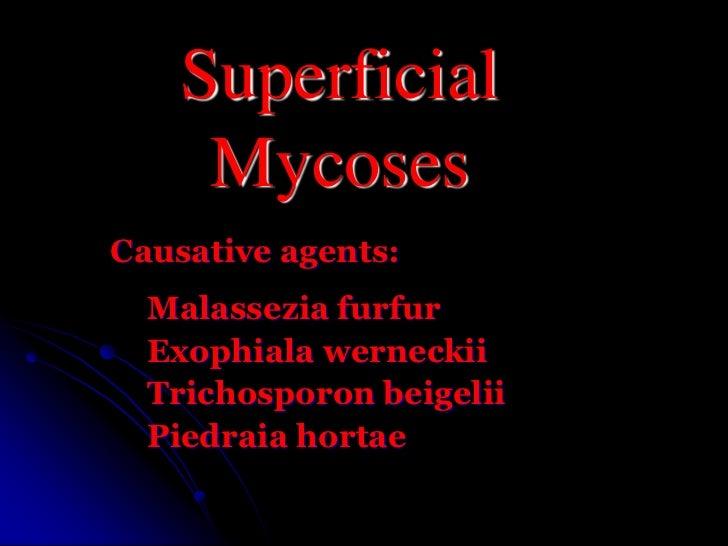 Superficial Mycoses<br />Causative agents:<br />Malasseziafurfur<br />Exophialawerneckii<br />Trichosporonbeigelii<br />Pi...