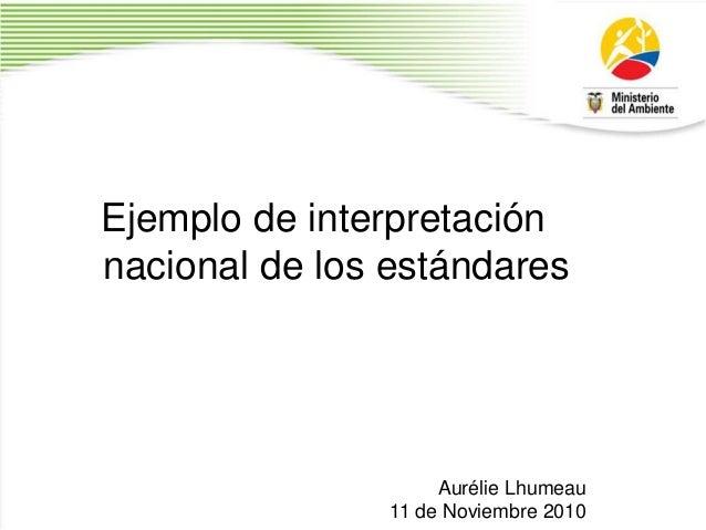 Ejemplo de interpretación nacional de los estándares Aurélie Lhumeau 11 de Noviembre 2010