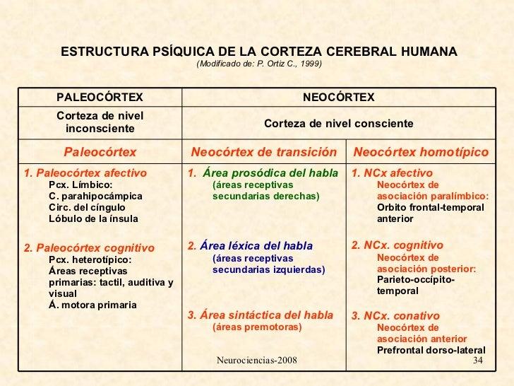 6 Teoria Del Lenguaje Y El Habla Personal