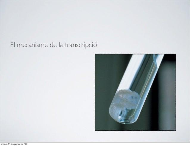 El mecanisme de la transcripciódijous 31 de gener de 13