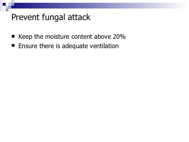 6 Fungal Attack