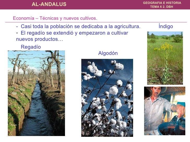 <ul><li>-  Casi toda la población se dedicaba a la agricultura.   </li></ul><ul><li>El regadío se extendió y empezaron a c...