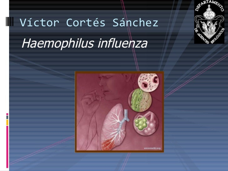 <ul><li>Haemophilus influenza </li></ul>Víctor Cortés Sánchez