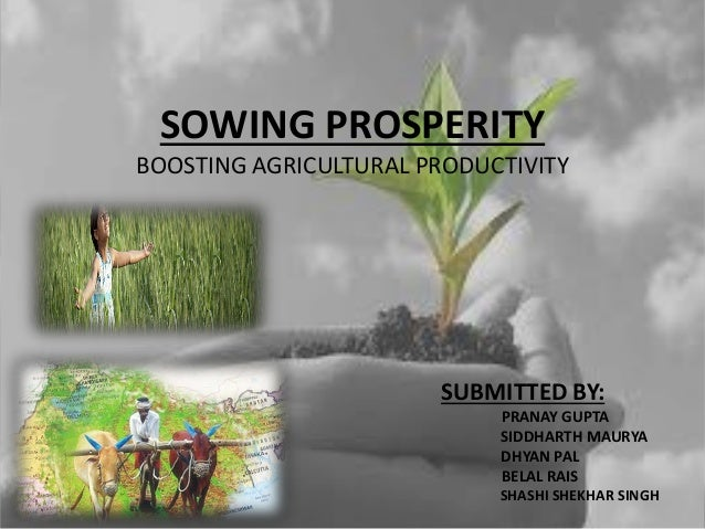 SOWING PROSPERITY BOOSTING AGRICULTURAL PRODUCTIVITY SUBMITTED BY: PRANAY GUPTA SIDDHARTH MAURYA DHYAN PAL BELAL RAIS SHAS...
