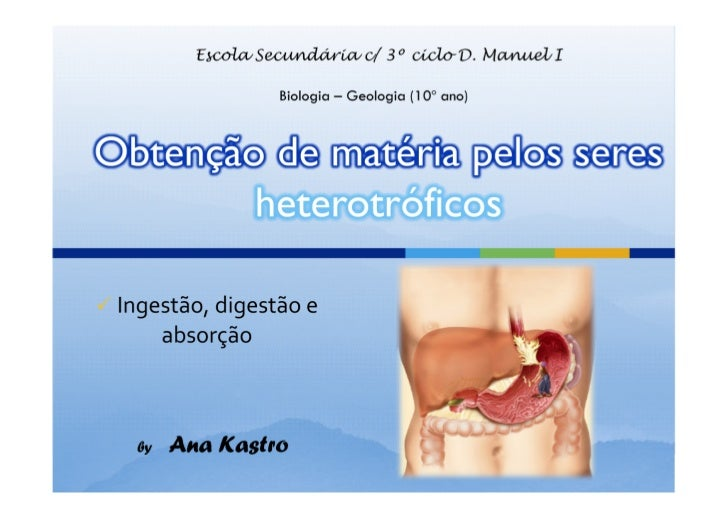 = FAGOSSOMA (tipo de vesícula endocítica)(vesícula contendo partícula alimentar)