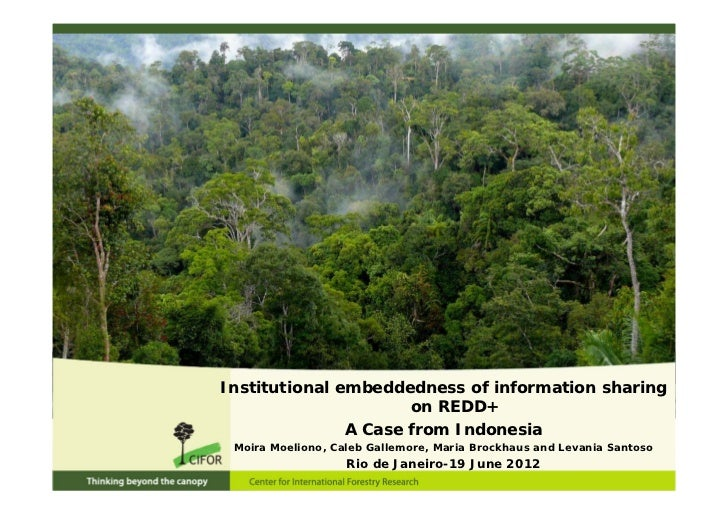 Institutional embeddedness of information sharing                      on REDD+               A Case from Indonesia Moira ...